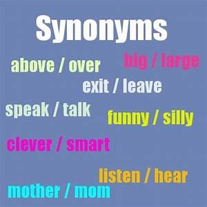 los sinónimos