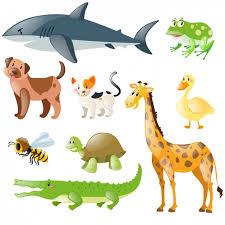 los animales en inglés