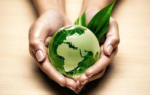 la ecología y medio ambiente