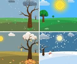 estaciones del año