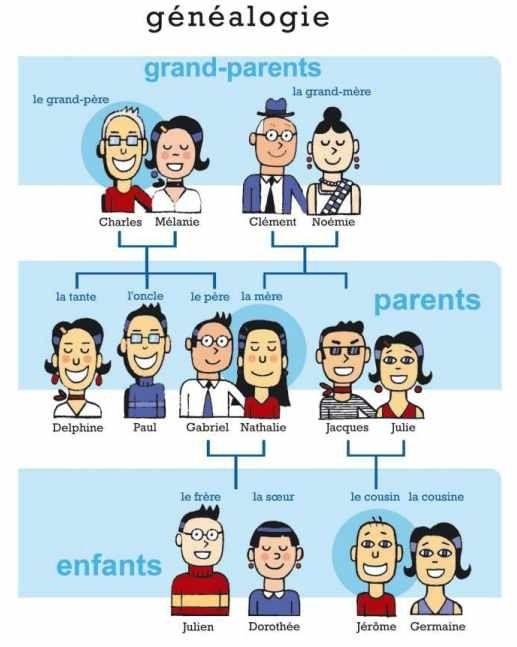 Miembros De La Familia Y El Vocabulario Con Las Palabras Asociadas Al Núcleo Familiar En Francés Que Debes Conocer