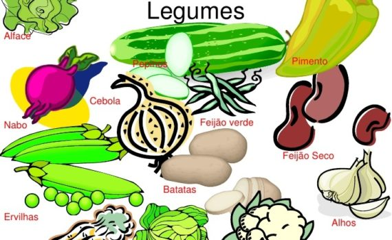 alimentos en portugués