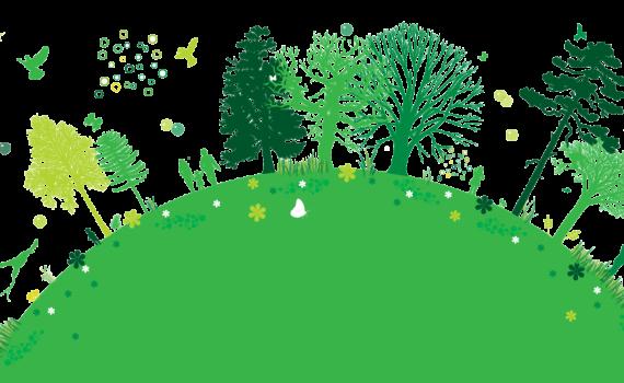 el modelo ecológico