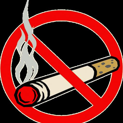 Oraciones de prohibición